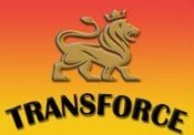 Transport agabaritic profesionist cu Transforce