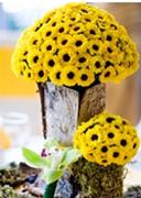 Carm d'or: Aranjamente florale inedite