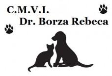 C.M.V.I. Dr. Borza Rebeca – cabinet veterinar profesionist!