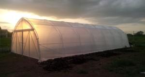 Phoenix Spor Construct iti ofera solarii tunel!