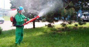 Lucrarile specifice ale deratizarii in Bucuresti