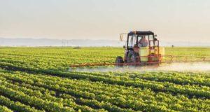 Afla care sunt cele mai profitabile culturi din agricultura